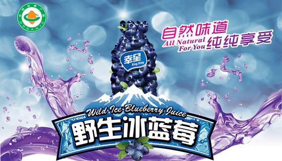 野生蓝莓饮料能否成为市场新贵
