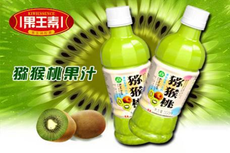 浓缩猕猴桃汁的生产工艺流程