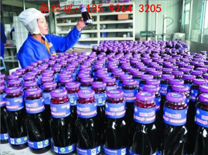 4000瓶每小时柿子深加工全自动