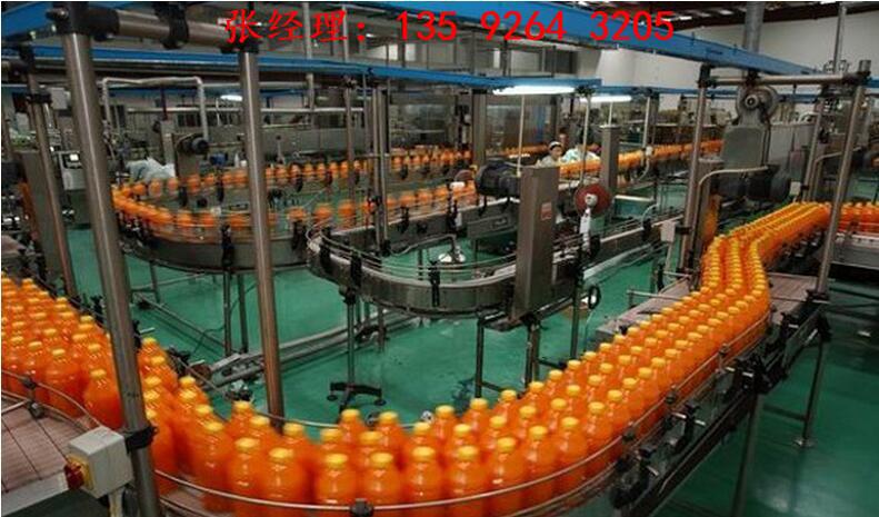 小型全自动番茄酱生产线设备厂家|