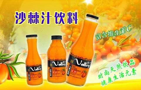 沙棘饮料生产线|灌装机|沙棘饮料生产设备厂家-温州科信