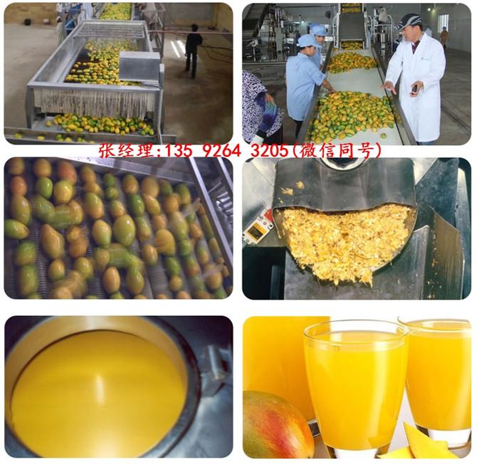 工艺配方中小型果汁饮料生产线设备全自动果蔬汁饮料设备生产厂家