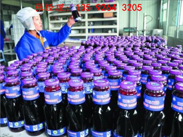 果酒生产加工设备厂家|发酵型果酒灌装包装生产线