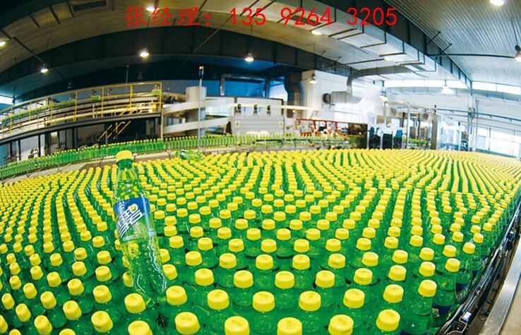 中小型产量全自动每小时2000瓶汽水饮料生产线加工设备
