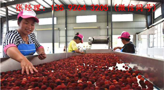 年产100吨红枣汁饮料设备多少钱 红枣饮料生产线机器