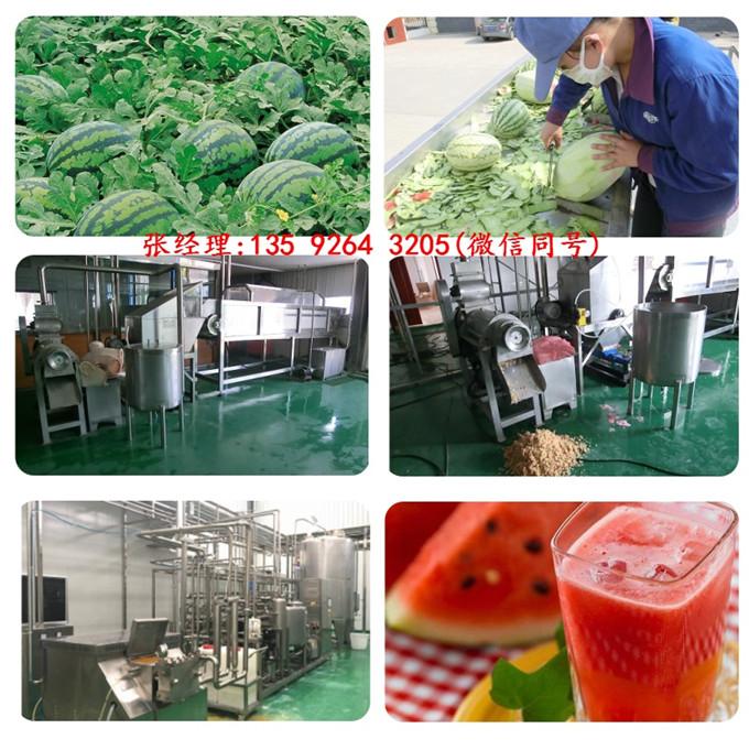 小型西瓜汁饮料生产线设备 西瓜汁设备多少钱