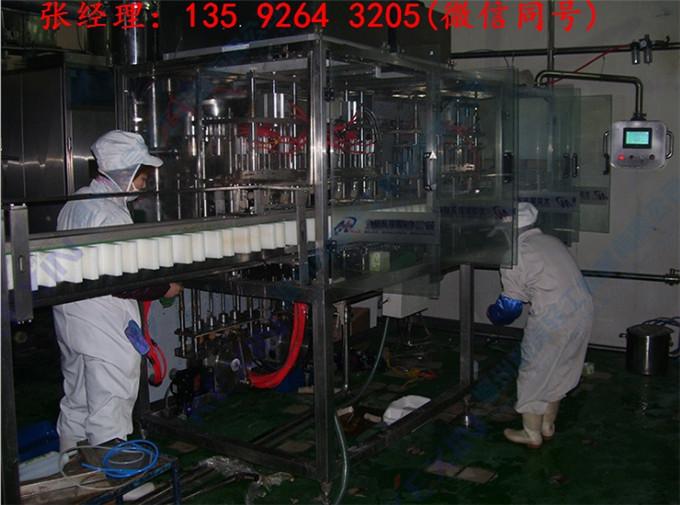 小型全自动酸奶生产加工设备 瓶装酸奶设备生产厂家