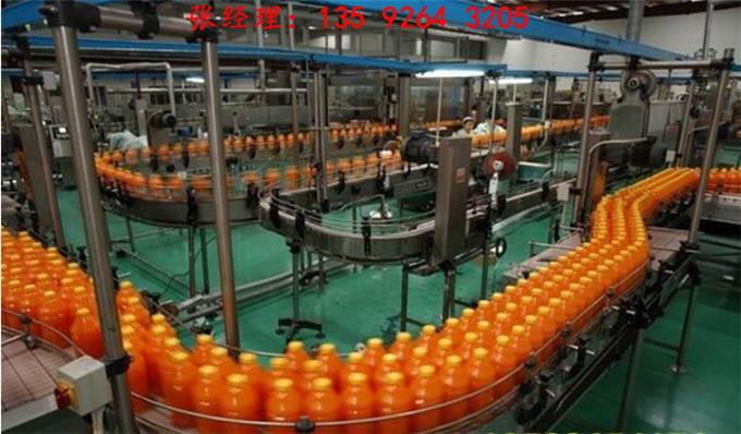 2020农业合作社沙棘深加工沙棘汁沙棘酵素生产线设备厂家